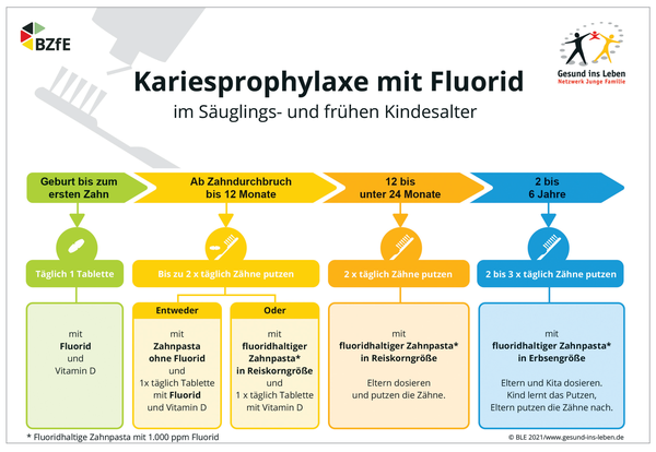 Ein Leitfaden zur Fluoridprophylaxe.